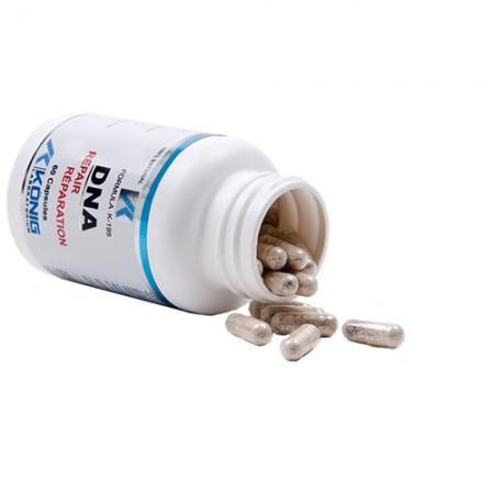 DNA repair (reparator de ADN)