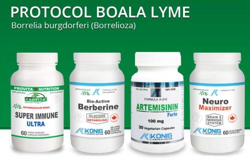 Protocol boala Lyme - Borrelia burgdorferi (Borrelioza)