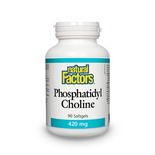 Phosphatidyl Choline (Fosfatidil Colina)